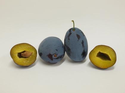 Aufgeschnittene Frucht der Zwetschensorte 'Franzi®'